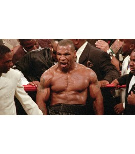 Mike Tyson's Boxing Career on 20 DVDS