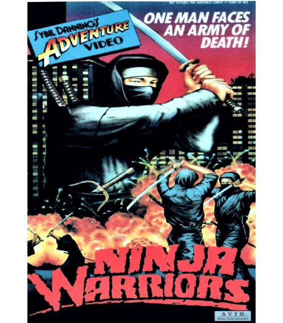 Ninja Warriors starring Ron Marchini on DVD